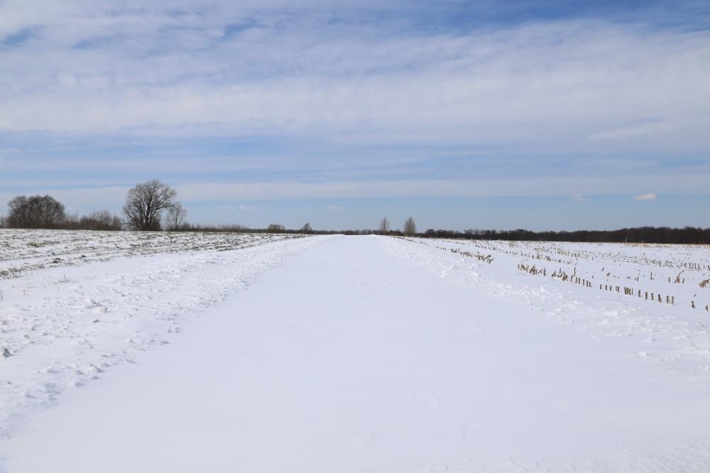 de Stuivenberg waar het inderdaad sneeuw stuift: geen doorkomen aan