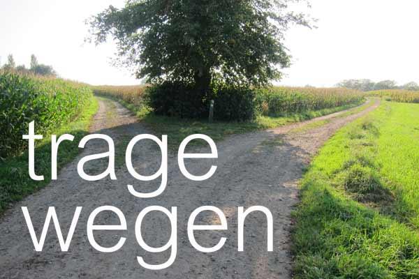 splitsing Boonakker en Hoek Ter Hulst (vroeger Betsbergweg)