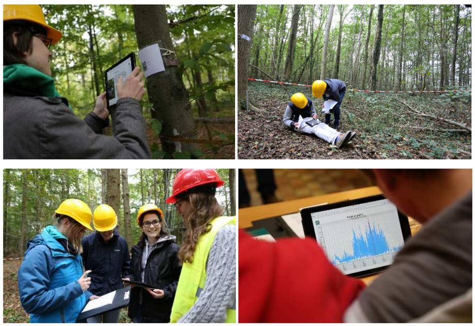 Leerlingen aan het werk in bos en klaslokaal tijdens de Week van de Wetenschap (foto's: Universiteit Gent)