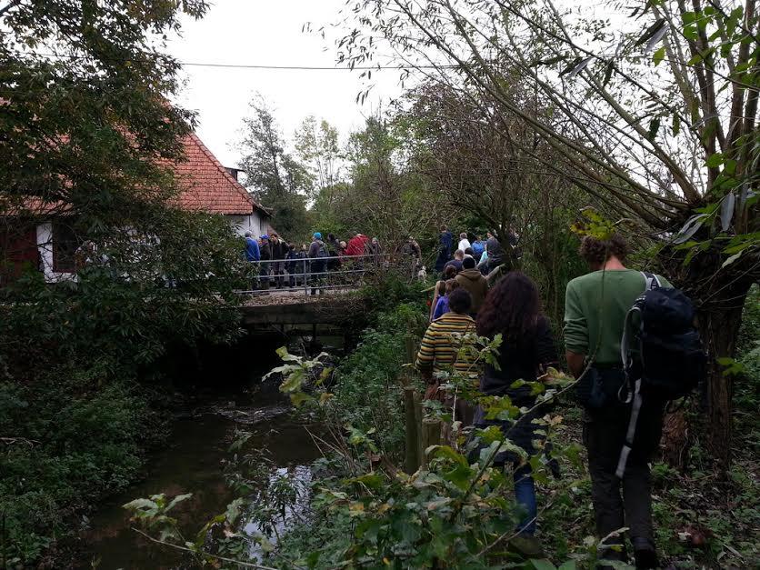 wandeling langs het Schellaertpad bij de Watermolenstraat in Moortsele (foto via werkgroep)