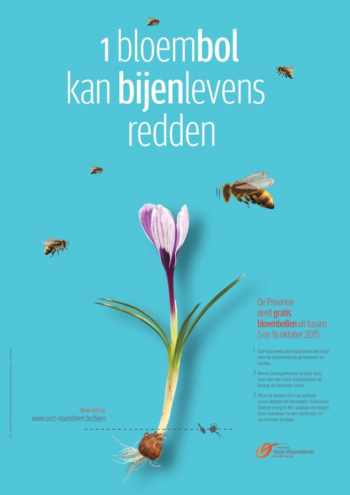 de campagne van de provincie Oost-Vlaanderen: gratis krokusbollen om de bijenpopulatie te ondersteunen