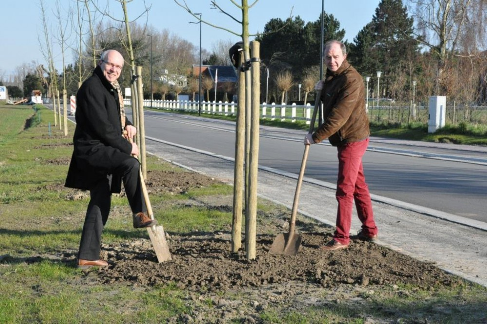 Jan Martens en Christ Meuleman planten bomen langs de Van Thorenburghlaan